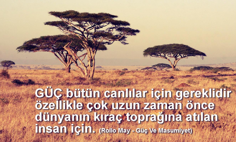 kıraç Rollo MAy